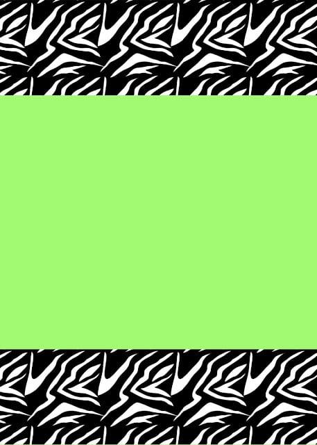 Zebra Birthday Invitation Templates